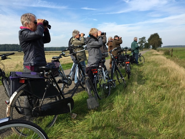 Bird Watch 3-10-15 (foto G. Glotzbach)