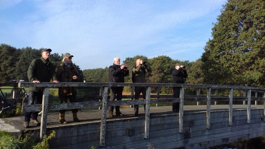Vogeltellers aan de slag (foto Arend van Dijk)