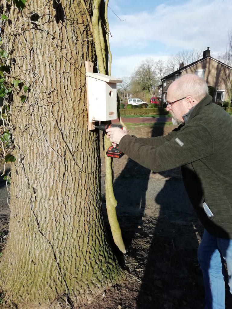 Vrijwilliger John Kloppenborg monteert een nestkast op 1.50 meter hoogte.
