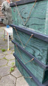 Nestkasten maken buiten tijdens NL-doet in Lhee