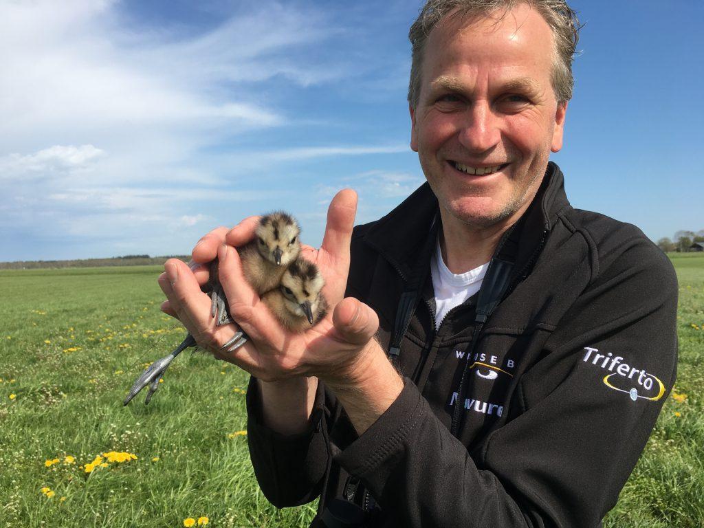 Zo ziet een trotse weidevogelbeschermer met jonge wulpen in zijn handen er uit.